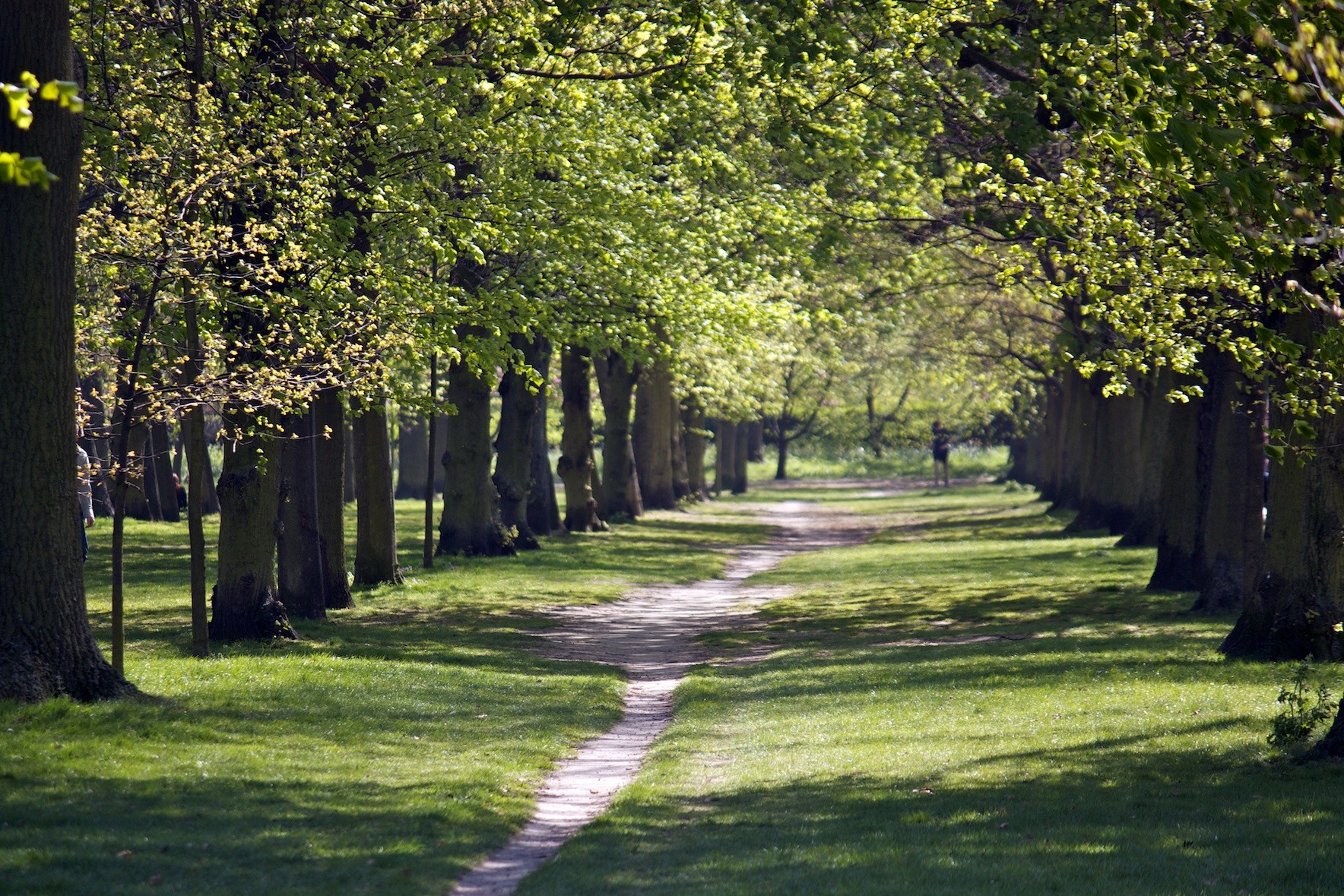 Footpath in Regents Park