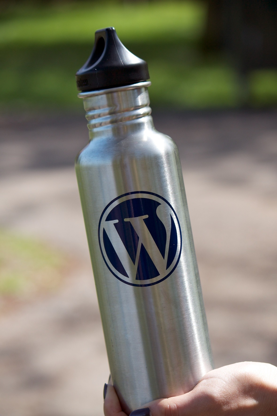 WordPress Water Bottle